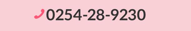 0254-28-9230