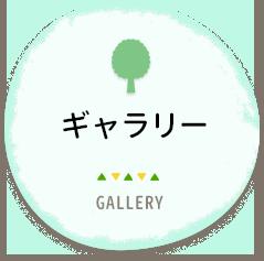 ギャラリー GALLERY