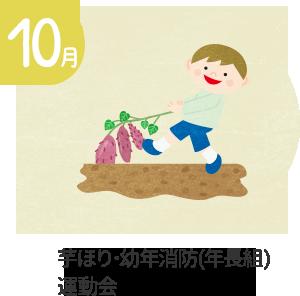 10月 芋ほり・幼年消防(年長組)・運動会・園外保育(年中・年少組)