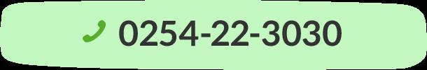 0254-22-3030